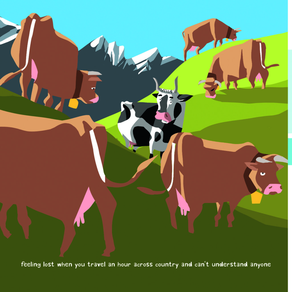 cows-cartoon